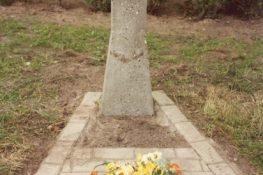 141 Jabbeke Monument FDejonghe.jpg